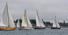 Passing Torrey Island (johnarey) Tags: irian dulcinea sailboats misty gesture err