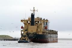 S-Bronco... Tyne 210818 (silvermop) Tags: ship boats ships sea bulkcarriers bulkers port river tyne sbronco