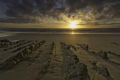 Castlepoint sunrise (dave.fergy) Tags: beach coast dawn sunrise rocks leadinglines