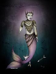 Mercat Mermaid Cat Art (shaire productions) Tags: mercat mermaid cat pussycat kitten art underwater fantasycreature surreal fish fins illustration sherriethaiart shaireproductions