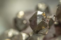 Cristales de Pirita (ipomar47) Tags: mineral pirita pyrite museo geominero madrid españa spain pentax k3ii macro macrofotografia photomacrography macrography macrophotography closeup