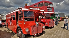 Routemaster Bus Variations. (ManOfYorkshire) Tags: routemaster bus bsues variation modified breakdown tender rescue wlt308 vlt66 dorset steamfair 2018 posed display exhibits parked doubledecker converted