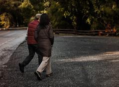 DSC_0093 (Carolina Fallo) Tags: couple travel landscape roadtrip road wanderlust woods trees árboles naturaleza nature green