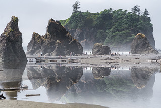 Olympic-Peninsula-Reflection 6