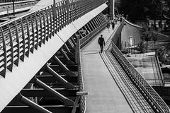 I only see li(n)es / walk the line (Özgür Gürgey) Tags: 2018 24120mm bw d750 goldenhorn haliç nikon architecture bridge diagonal lines people shadows street walking istanbul