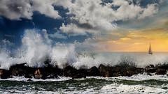 Day Dreaming (Francine Morris) Tags: hdr hawaii honolulu northamerica oahu places usa waikiki