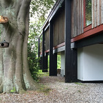 architect: jørn utzon: middelboe house, holte, denmark 1953-1955 thumbnail