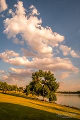 Dreamy sunset (jchmfoto.com) Tags: lake spain sky madrid landscape europe sunset bluesky anochecer cielo cieloazul crepúsculo dusk españa europa evening lago landscapes nightfall noche ocaso paisaje paisajes puestadesol puestadelsol sundown twilight leganés es