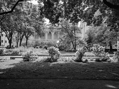 Gardens (ancientlives) Tags: chicago illinois il usa gardens artinstitute michiganavenue nature walking downtown loop city blackandwhite bw mono monochrome september 2018 thursday summer