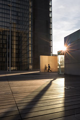 BNF (Fabdub) Tags: bnf paris sunset leicaq france bibliothèquenationaledefrance