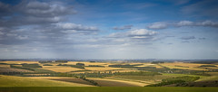 mellow days in Wiltshire (HHH Honey) Tags: wiltshire landscape clouds cloudscape wylyevalley wylyedown sonyα7ii sigma2470lens sigma