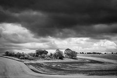 Curves (Paul Timlett) Tags: downland landscape monochrome farmland bnw barleycroftfarm blackwhite nikond810 sky outdoors 50mm