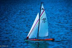 Sailing (nebulous 1) Tags: saililng sailboat model irvine ca water blue chriscross nikon nebulous glene williamrmasonregionalpark
