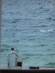 """view from the window""!!  P1060323 (amalia_mar) Tags: weeklythemes viewfromthewindow sea coffee bottle water blue bluemonday sundaylights"