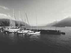 La Tour-de-Peilz (alvin26000) Tags: latourdepeilz vaud suisse switzerland blackandwhite bnw monochrome