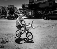 Just taking his deer head out for some fresh air (BWalworth) Tags: ifttt instagram just taking his deer head out for some fresh air street streetphotography streetpeople deerhead bike chicago chitown fuji fujifilm fujifeed fujilove blackandwhite bnw monochrome bnwsociety bwlover bw bwsociety monotone