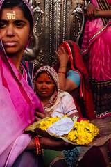 Women & Marigolds for Holi (AdamCohn) Tags: abeer adamcohn hindu india vrindavan gulal holi pilgrim pilgrimage अबीर गुलाल होली