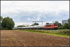DB Cargo 1614+Styreentrein, 31-8-2018 (Allard Bezoen) Tags: trein train zug lok elok loc eloc locomotief locomotive lokomotieve ex ns cargo db deutsche bahn dbc hengelo styreen ketels ketelwagens keteltrein bad bentheim 1600 1614 alsthom gec mte francorail nez cassé