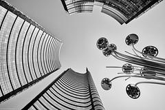 Mailand Porta Nuova b&w (rainerneumann831) Tags: mailand portanuova architektur abstrakt lookup linien bw blackandwhite blackwhite ©rainerneumann