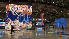 2018-09-16_03-53-21 (denn22) Tags: svo russland russia moscow airport terminal denn22 2018 september s9