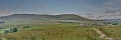 Whernside (Bri_J) Tags: yorkshirethreepeaks walk yorkshiredales nationalpark northyorkshire uk yorkshire threepeaks countryside nikon d7200 whernside hill panorama clouds sky path