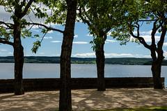 Days of Summer (e-box 65) Tags: summer östersund sweden sverige jämtland trees sea ostersund park shade d7200 18 105 lake