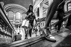 The Shoe (Mario Rasso) Tags: mariorasso nikon d810 nikond810 usa manhattan grandcentral grandcentralterminal newyork midtown transportation sneaker urban people realpeople lifestyle lifestyles standing indoors leisureactivity walking day women city flickrtravelaward