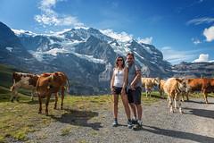 wir (Hanspeter Ryser) Tags: berneroberland grindelwald wengen berge eiger mönch jungrau männlichen wandern landschaft natur kuh schweiz switzerland wunderbar art
