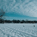 Ski Trails on Frozen Lake of the Isles, Minneapolis in Winter