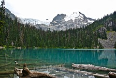 DSC_4164 Love the turquoise colour of the lake (christinachui79) Tags: alpinetrees alpine beautiful trees glacierlake naturephotography landscapephotography mothernature nature landscape summer lake blue nikon reflections mountain water clouds tranquil scenic serene outdoor