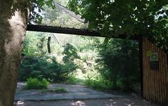 Blijdorp Zoo (10) (bertknot) Tags: blijdorp blijdorprotterdam blijdorpzoo dutchzoo dierentuin blijdorpdierentuin