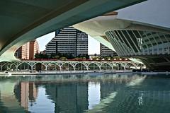 Bajo el puente de Monteolivete - València (Kiko Colomer) Tags: francisco jose colomer pache kiko valencia valence artes ciencias arts ciencies jardin rio turia calatrava puente lago reflejo umbracle