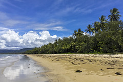 Gone Paradise (_Hadock_) Tags: playa beach paradise corona iphone x 6 pqraiso palm palmeras sand filipinas philipinas philippine island isla creative commons fullhd fondo de pantalla screensaver desktop wallpaper