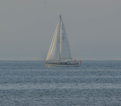 Slow sailing in Öresund (frankmh) Tags: yacht sailingboat danish öresund
