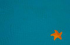 Floating star (Pi-F) Tags: piscine eau water étoile plastique flottaison bleu orange vacances abstrait