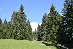 _DSC0315 Ste-Croix - Les Avattes (Marie-Annick Vigne. + 1'000'000. Merci. Thanks) Tags: randonnée rando suisse vaud jura stecroix bullet chasseron