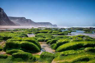 Save the Earth. Playa de Cordoama.