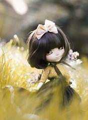 Yellow (Sokeriritari) Tags: pullipdoll pullip obitsu pullipsouseiseki souseiseki pinea summer rewiged wig leekeworld