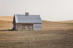 Barn (Pedalhead'71) Tags: abandoned barn desert easternwashington landscape palouse prairie rural washington whitmancounty wheat