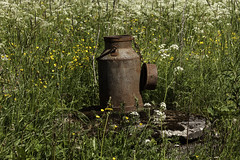 Rusty old milk churn (Burminordlicht) Tags: rust rusty old oldthings milkchurn abandoned rost rostig kanne milchkanne