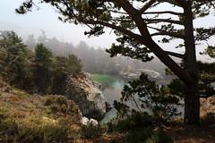 Riserva naturale statale Point Lobos (raffaele pagani) Tags: pointlobos pointlobosstatenaturalreserve riservanaturalestatalepointlobos smca areadiconservazionemarinastatale statemarineconservationarea areamarinaprotetta riservamarina marineprotectedarea marinereserve carmel carmelbythesea montereycounty montereypeninsula cabrillohighway highway1 costa pacificapacificcoast oceanopacifico pacificocean california unitedstates canon mare paesaggio mist fog foschia baia bay roccia oceano