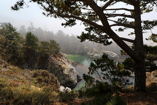 Riserva naturale statale Point Lobos