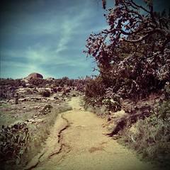 (Talisman39) Tags: landscape muir hipstamatic 1970s trail vignette enchantedrock tx texas