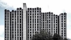 (Delay Tactics) Tags: leicester de montford house flats apartments high rise tower block building architecture sky clouds trees windows concrete brutal brutalist brutalism explore