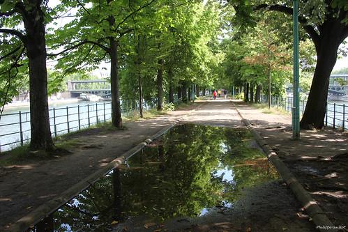 Paris, allée des Cygnes