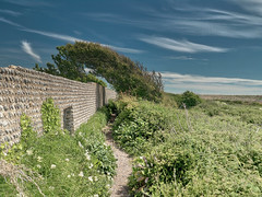 TidemillsWindswept-NewDP - Copy (iankellybn26dj) Tags: uk england sussex seaford newhaven landscape sky summer sunlight sun ruins path coast