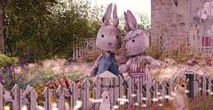 buns (cleomariex) Tags: bunnies rabbit love pastel girly secondlife second life