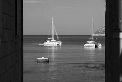 To katamaranar (dese) Tags: two 2 to katamaran katamaranar catamaran catamarans jadranskomore adriaticsea adriatic sea komiža båtar boats coast katamarane catamarán catamarano catamarani vis hav havet july242018 july24 2018 morning morgon europa adriahavet july juli summer sommar ferie croatia kroatia europe dalmatia adriatischesmeer maradriático adriático адриатическоеморе