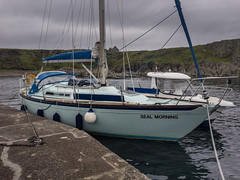 Inistrahull, Saturday 8th September (apcmitch) Tags: sealmorning ireland coast ni riverbann iphonephotos lighthouses
