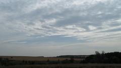 IMG_8524 (ALEKSANDR RYBAK) Tags: пейзаж деревья поле осень погода природа сезон небо облака облачность landscape trees field autumn weather nature season sky clouds cloud cover